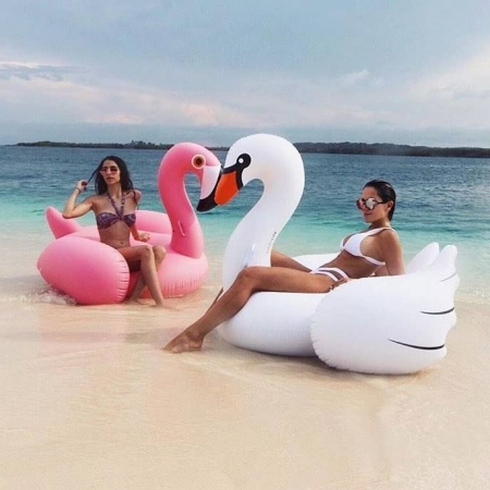 SWAN LUXE RIDE ON FLOAT